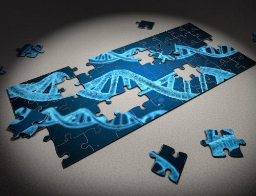 Che cosa significa danno epigenetico?